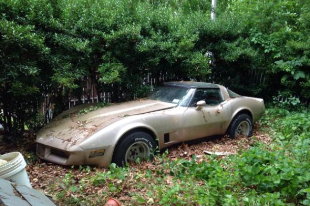 1981 Corvette1